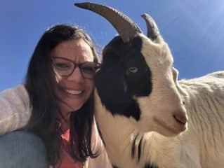 Goat friends!