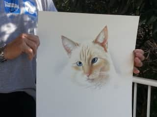 A Portrait Vic did of George - the Cat we sat in Northland, NZ
