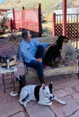Barb relaxing with Jake and Zenda, after a hike in southwestern Arizona