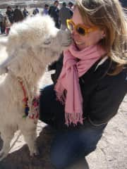 Baby llama kisses in Argentina.