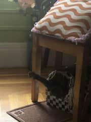 When he sleeps, he goes craaaaaaaaaizy kicking and screaming!!!