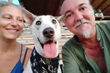Dan, Mars and Homer at the beach at pet sit Canggu, Bali