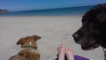 Quality beach time with Alex and Cadel in Adelaide SA
