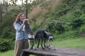 Julia with dogs of our hosts