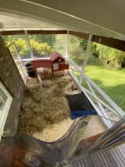 The bunnies fully enclosed area and hutch