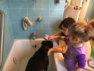 washing the doggie dharma with my little friend ellie