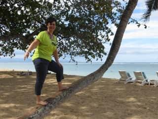 Climbing a palm tree in Bali