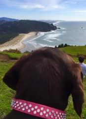 Heidi loves a good hike!