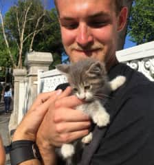 This sweet kitten was right at home with Luke.
