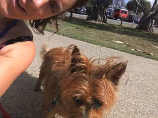 Emily selfie with Hector after our walk