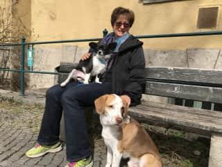 Having a rest after a long walk; Petsitting in Munich