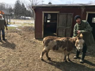 Dougal on his family farm with the donkeys