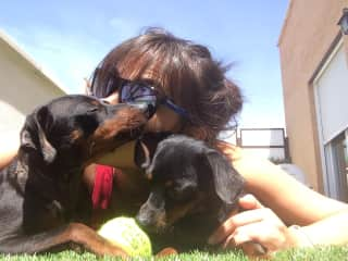 It's me with my dogs