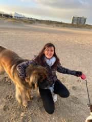Brigit with a Leonberger  on  the beach and the North Sea where we live in the Netherlands