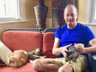 Rick and kitty trio in the Yucatan, Mexico.