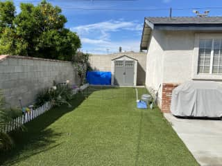 Backyard with artificial turf and where my dogs do their business.