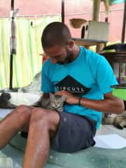 Visiting a cat shelter in Bali