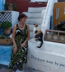 My Santorini cat.