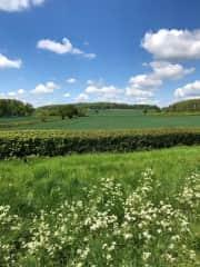 Countryside around us