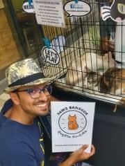 Volunteering with PAWS Bangkok