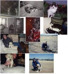 Twiggy, Bentley, Smudge, Cari and us