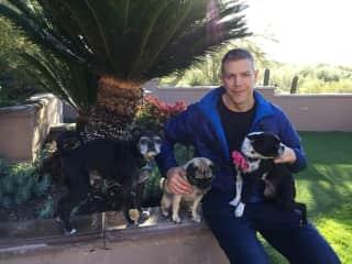 AZ plastic surgeon's 3 dogs we housesat for a week, Freya, Buster and Loki