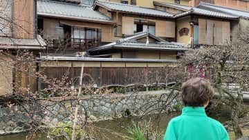 We were lucky enough to visit Japan last year.  Despite all the beauty and exciting things, Oskar spent two hours watching this exciting scene unfold; a local house cat, stalking a heron. It was the highlight of his trip, he still talks about this story!