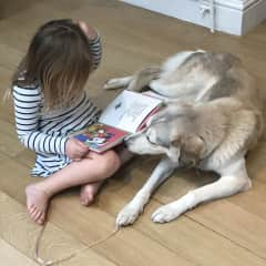 Our youngest reading to Primrose