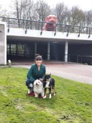 Catherine, with our beautiful housesit pets in Amsterdam at the local park. Our first international petsit!
