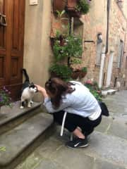 I am physically unable to walk past a cat and not stop