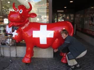 Milking my cow in Switzerland