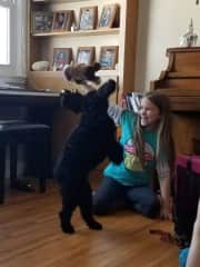 Our daughter plays with a regular dog guest in our home.