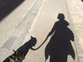 Walking with Stanley the French bulldog, in Gascony