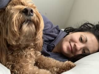 Waking up with Riley the labradoodle