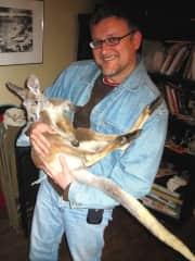 Yes, a real-live juvenile kangaroo!