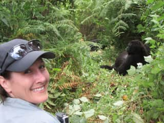 One of my greatest adventures in Africa - hanging out with Silverback gorillas!