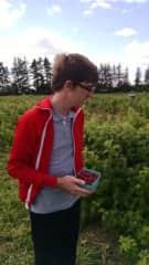 Michael picking berries, 2015