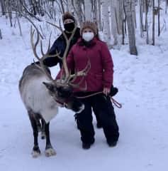 Reindeer Ranch, Fairbanks, Alaska