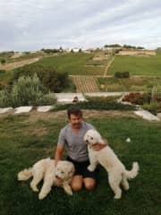 Saying goodbye to Biscuit and Noodle in Portugal