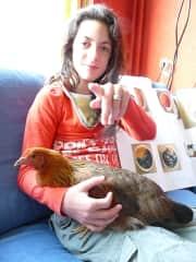 big chicken, Rosida, still loves to hug a lot