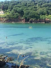 Beautiful Hope Cove where we carried out a pet sit in Feb 2020