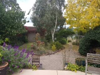 View of back garden from patio.