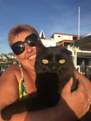 This is Blackie, he is a semi wild cat who is fed and looked after by our local bar owners