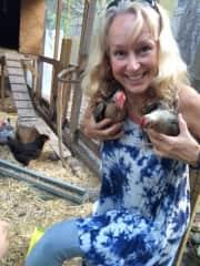 My little chicken friends
