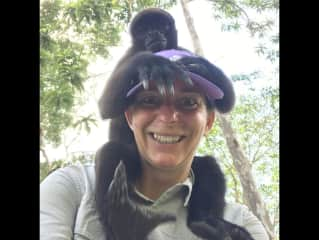 Monkeying around in the Amazon Jungle