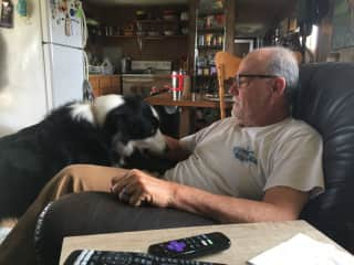 My husband loves the two border collies on the ranch we are currently helping out on