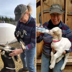 3/2019 helping out on the goat farm