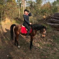 Love riding horses