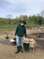 Collin with Lillian the goat