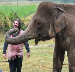 My son Vaughn came with us to visit the Elephant Retirement Park in the hills near Chiang Mai.